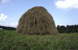 Balas de heno en un campo en Fotografía de archivo libre de regalías