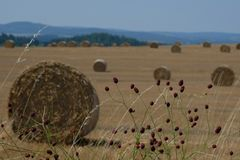 Balas de heno en un campo en Checo Foto de archivo libre de regalías