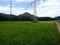 Balas de heno en un prado verde Fotografía de archivo libre de regalías