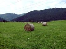 Balas de heno en un prado verde Imágenes de archivo libres de regalías