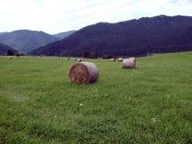 Balas de heno en un prado verde Imagen de archivo