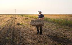 Balas de heno jovenes y fuertes del tiro del granjero en un tractor remolque - b Imagenes de archivo