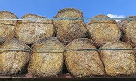Balas de heno redondas Foto de archivo libre de regalías