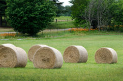 Balas de heno redondas en la granja Imagen de archivo libre de regalías