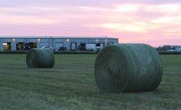 Balas de heno verdes redondas grandes en la puesta del sol Foto de archivo libre de regalías