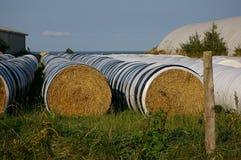 Balas de heno y granero 4 Imagen de archivo