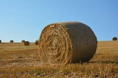Balas de la paja en campo cosechado con muchas balas de heno en horizont Imágenes de archivo libres de regalías