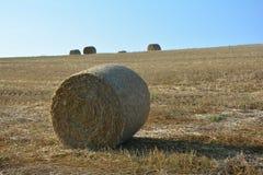 Balas de la paja en campo cosechado con muchas balas de heno en horizonte Fotos de archivo