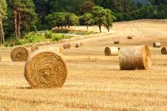 Balas de la paja en campo en el día de verano del bosque en la granja en la República Checa Maíz de la cosecha Montañas de Moravi fotos de archivo libres de regalías