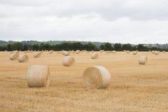 Balas de la paja en balas de heno del campo del verano Foto de archivo libre de regalías