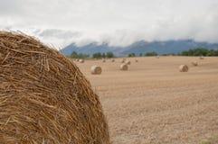 Balas de la paja en los campos Tierras de labrantío Fotografía de archivo