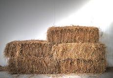 Balas de paja del arroz en campo Fotos de archivo