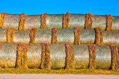 Balas de paja en hoja en campo con el cielo azul Imagen de archivo