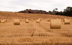 Balas de paja en un campo Imagen de archivo