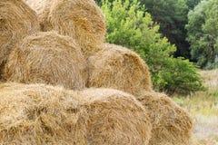 Balas de paja de oro amarilla apilada en una pila en la granja con el cielo azul en el fondo Comida para los animales del campo Foto de archivo libre de regalías