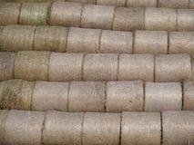 Balas de trigo, detalle, textura del fondo Imagen de archivo libre de regalías