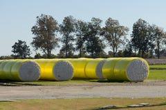 Balas del algodón Fotografía de archivo