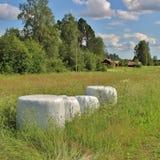 Balas del ensilaje en paisaje hermoso del verano Fotografía de archivo libre de regalías