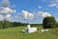 Balas del ensilaje en paisaje hermoso del verano Imagen de archivo