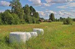 Balas del ensilaje en paisaje hermoso del verano Foto de archivo