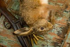 Balas y rifle de la caza Foto de archivo libre de regalías