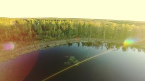 balaton匈牙利湖做照片日落 在树的飞行 股票视频