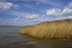 Balaton Foto de Stock Royalty Free
