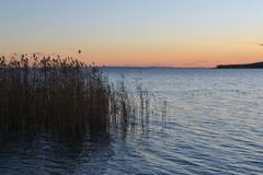 balaton Fotografia Royalty Free
