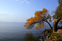 Balaton. Lake Balaton in autumn Stock Photography