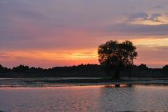 balaton hungary lake make photo sunset Выравнивать свет с жизнью реки красивейший взгляд захода солнца взрослые молодые стоковое изображение