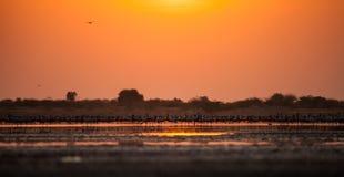 balaton hungary lake make photo sunset Стоковая Фотография RF