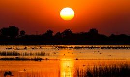 balaton hungary lake make photo sunset Стоковое Фото