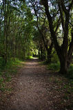 balaton kanyavar περπάτημα μονοπατιών s kis νησιών Στοκ φωτογραφίες με δικαίωμα ελεύθερης χρήσης