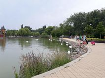 Balaton kust, folk, vatten fotografering för bildbyråer