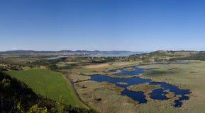 Balaton lake view in Tihany. Marshland Royalty Free Stock Photography