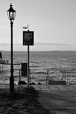 Balaton lakeshore Zdjęcie Royalty Free