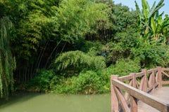 Balaustrada da margem contra árvores verdejantes e arbustos em d ensolarado Fotografia de Stock Royalty Free