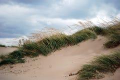 Balayé par le vent Image libre de droits