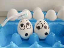 Balayez le concept de dents eggssh deux drôle Image libre de droits