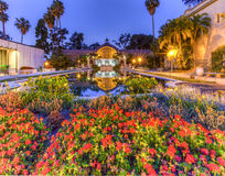 Balboa Park flowers and lily Pond Stock Images