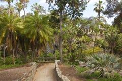 Balboa park gardens San Diego California. Royalty Free Stock Photos
