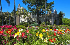 Springtime in Balboa Park. Balboa Park with a profusion of springtime flowers, San Diego, California Royalty Free Stock Images