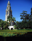 BALBOA PARK IN SAN DIEGO. California Tower with flowers  in foreground Stock Images