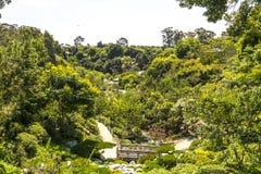 Balboa Park Vista. An overlook of the Japanese Tea Garden in Balboa Park, San Diego Royalty Free Stock Image
