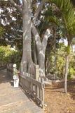 Balboaen parkerar San Diego Kalifornien Arkivbild