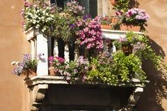 Balcão com flores Fotos de Stock Royalty Free