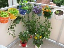 Balcão com flores e vegetais imagem de stock