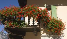Balcão e flores, Torbole, Itália fotografia de stock royalty free
