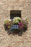 Balcão e muralha Imagem de Stock Royalty Free