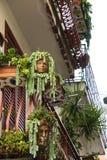 Balcón adornado con las plantas y las macetas especiales Imagen de archivo libre de regalías